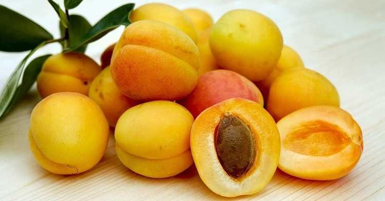 Лечение рака - абрикосовые косточки (витамин B17)
