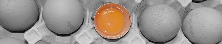 Вред и польза сырых яиц - сырое куриное яйцо